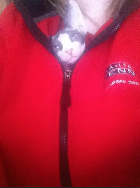 Jonesy the Cat, My Little Chest Burster...
